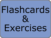 Flashcards & Exercises
