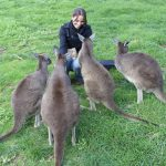 Moving to the Other Side of the World, Part 3: Settling in Australia
